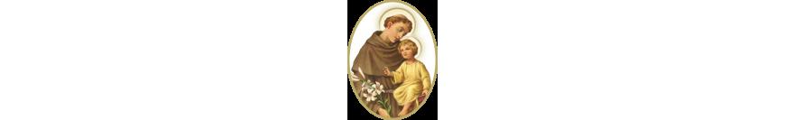 Cărţi - Sfântul Anton
